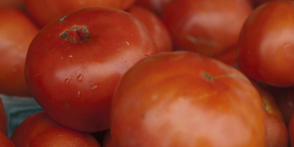 Close up of red tomatoes - image by Lisa Missenda